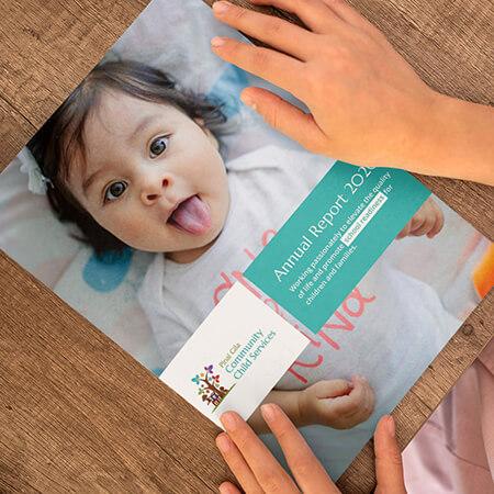 Pinal Gila Visual Annual Report